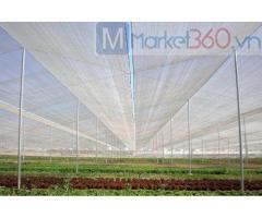 Lưới chắn côn trùng Politiv, lưới chắn côn trùng nhập khẩu, lưới làm nhà kính