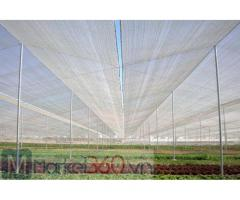 Lưới chống côn trùng politiv israel, lưới chống côn trùng nông nghiệp, lưới chắn côn trùng trồng rau sạch