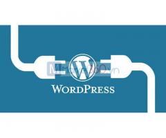 Học Wordpress tại TPHCM