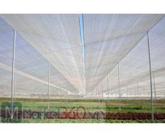 Lưới chắn côn trùng israel, lưới chắn côn trùng Politiv, nhà lưới nông nghiệp