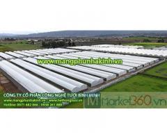 Công ty nhập khẩu màng nhà kính Politiv Israel,đại lý bán màng nhà kính, nhà nhập khẩu và phân phối độc quyền màng nhà kính Politiv Israel tại Việt Nam