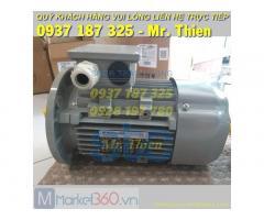 ACM 225S-4/HE – Động cơ điện 3 pha – AC Motoren Vietnam – Đại lí phân phối chính hãng AC Motoren tại Việt Nam