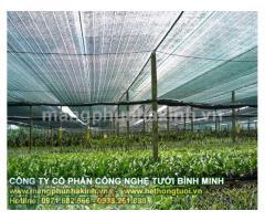 Lưới chống nắng trong nông nghiệp, lưới che nắng sử dụng trong nông nghiệp lan tại hà nội