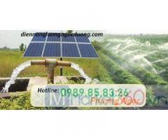 Hệ thống điện năng lượng mặt trời trong nông nghiệp, ứng dụng điện mặt trời cho chăn nuôi