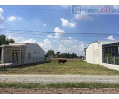 Cần bán đất ở Xã Suối Đá Huyện Dương Minh Châu Tỉnh Tây Ninh