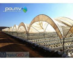 Màng nhà kính Israel, nhà màng trồng dưa lưới,trồng dưa lưới trong nhà kính, mô hình trồng dưa lưới