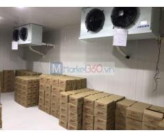 Di dời, tháo lắp kho lạnh trữ kem phân phối cho đại lý tại TP.HCM