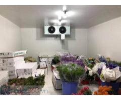 Lắp đặt, sửa chữa kho lạnh bảo quản hoa tươi tại Đà lạt