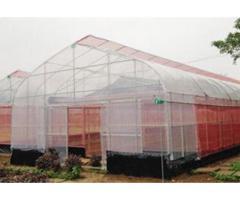 Nhà lưới, nhà lưới nông nghiệp, lưới chắn côn trùng nhập khẩu politiv israel, nhà lưới trồng rau