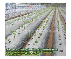 Màng phủ nông nghiệp cao cấp, màng phủ nông nghiệp loại 1, màng phủ nông nghiệp thời vụ,màng phủ nông nghiệp che cỏ