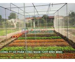 Thiết kế nhà lưới trồng rau, bản vẽ thiết kế nhà lưới, kỹ thuật thiết kế nhà lưới