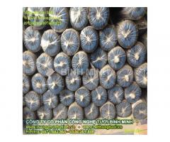 Cách sử dụng màng phủ luống, đại lý màng phủ nông nghiệp