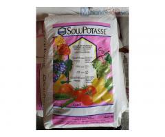 Potassium sulfate (Phân tưới nhỏ giọt Solupotasse - K2SO4) – Bỉ