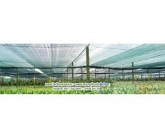 Lưới che nắng giá rẻ,lưới cắt nắng, lưới che giảm nắng, thi công lưới che nắng thái lan, lưới che nắng thái lan