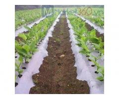 Màng phủ nông nghiệp, màng phủ 1.2m x400,màng phủ 1.4m x400,màng phủ 1.8m x400,…