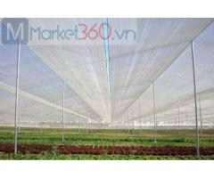 Lưới chắn côn trùng nông nghiệp giá rẻ, lưới chắn côn trùng hà nội, lưới côn trùng politiv israel
