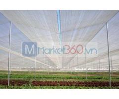 Lưới chắn côn trùng nông nghiệp, lưới chắn côn trùng hà nội, nhà lưới trên sân thượng giá rẻ
