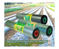 Những lợi ích của màng phủ nông nghiệp trong sản xuất, Màng phủ nông nghiệp, màng phủ sinh học