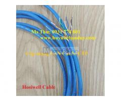 Cáp mạng Lan Hosiwell