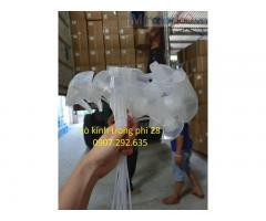 Nhà máy nhập khẩu cò kính trong phi 28 ngành dược phẩm