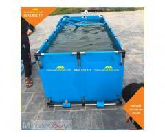 Bồn bạt nuôi cá Koi - Ý Tưởng Việt