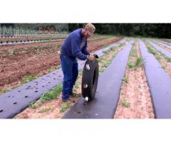 Màng phủ nông nghiệp giá rẻ, công ty sản xuất màng phủ nông nghiệp, đại lý màng phủ nông nghiệp