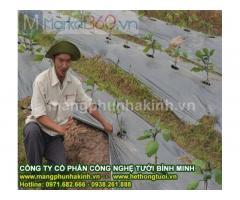 Sản xuất và cung cấp màng phủ nông nghiệp,màng phủ luống,lợi ích của màng phủ nông nghiệp