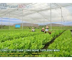 Nhà lưới politiv israel, mô hình nhà lưới trồng rau sạch, chi phí làm nhà lưới nông nghiệp