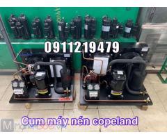 Lên cụm máy nén Copeland 5hp CRNQ-0500 cho kho lạnh