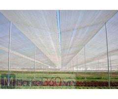 Lưới politiv Israel giá rẻ, lưới chắn côn trùng tại hà nội, lưới chắn côn trùng giá tốt