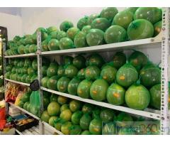Lắp đặt kho lạnh bảo quản bưởi sau thu hoạch