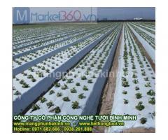 Hướng dẫn sử dụng màng phủ nông nghiệp,màng phủ nông nghiệp loại tốt,ưu điểm màng phủ nông nghiệp